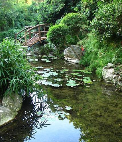 173 Zilker Botanical Gardens 365 Things To Do In Austin Tx