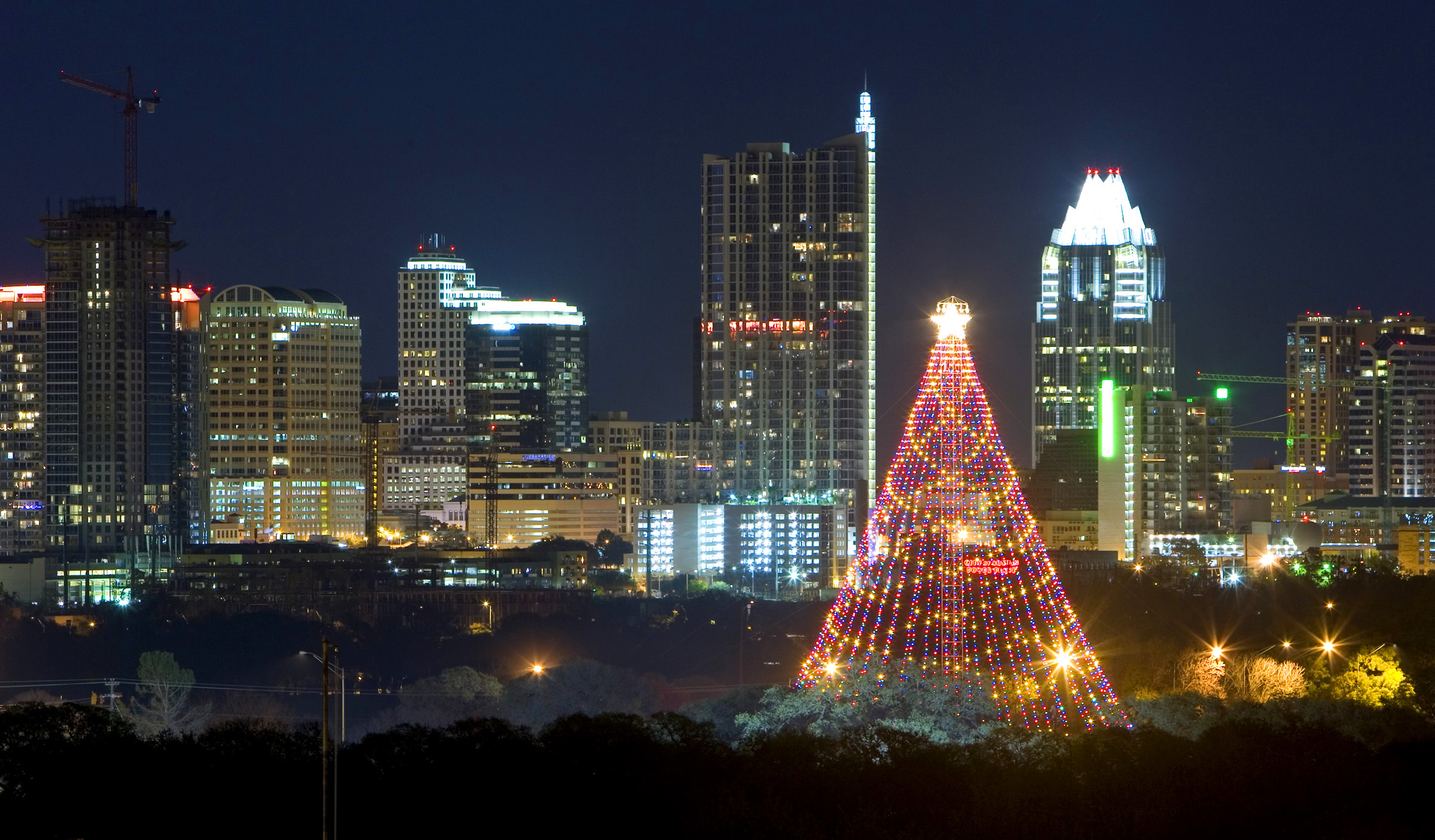 342. Visit the Zilker Tree - 365 Things to Do in Austin, TX
